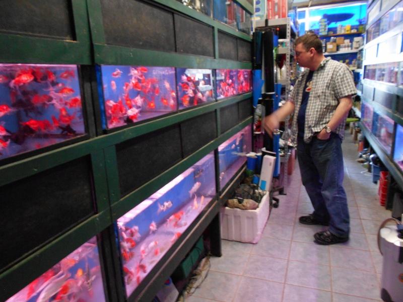 Toronto Aquarium 02410