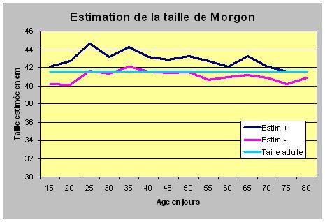 Avis aux amateurs Morgon10