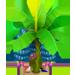 Bananier d'Hawaï => Banane d'Hawaï Blueja11