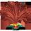 Aigrette Roussâtre => Plume d'Aigrette Roussâtre Egretf10