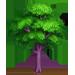 Vous cherchez un arbre ? Venez cliquer ici !!! Purple12
