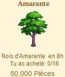Amarante => Bois d'Amarante Sans_t15