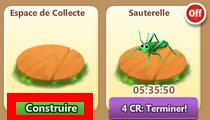 Hôtel des Insectes => Coccinelle / Phasme / Libellule / Sauterelle Sans_t46