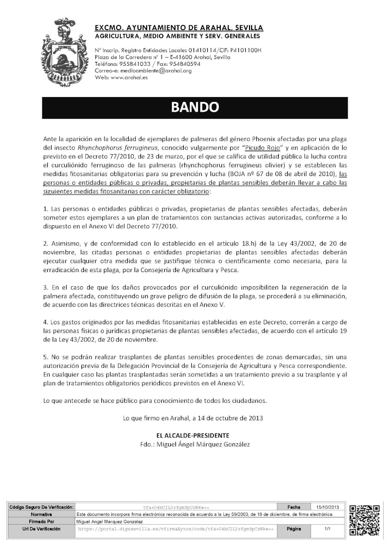BANDO ALCALDÍA MEDIDAS FITOSANITARIAS PICUDO ROJO Bando_10