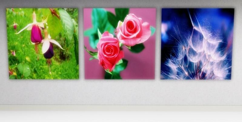 Flowers by mamaj Scree366