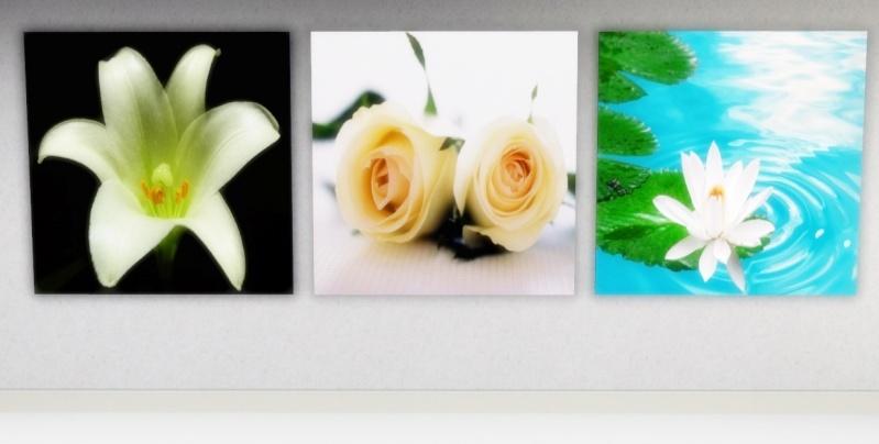 Flowers by mamaj Scree367