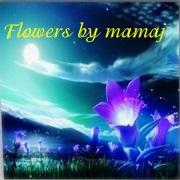 Flowers by mamaj Scree369