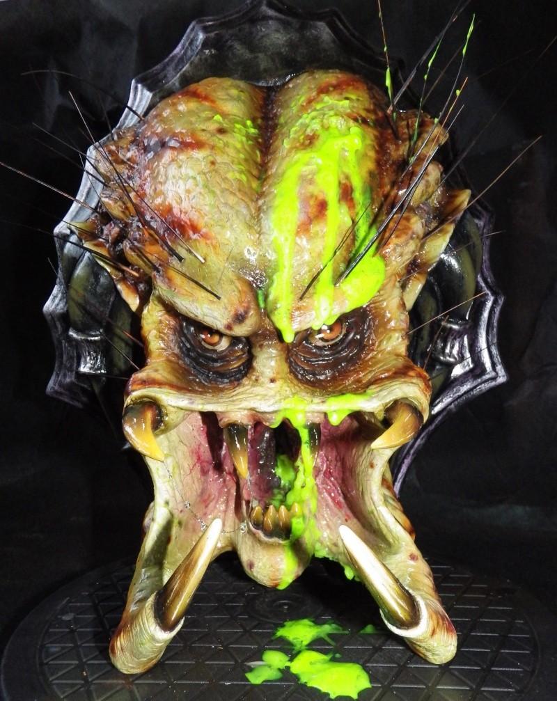 tête de predator 1/1 Imgp0512