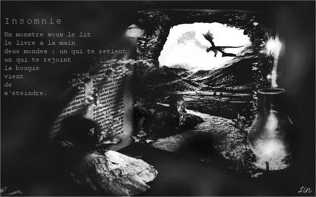 ¤ Galerie des Laids'arts ¤ - Page 3 Insomn10