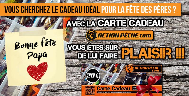 Action-peche - Page 4 Ap_fyt10