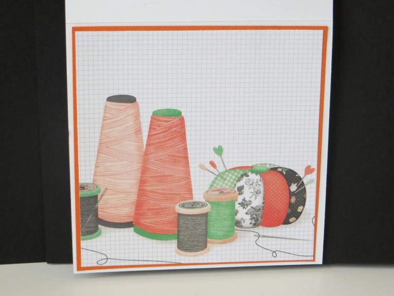 Kit du mois : Pincushion Img_5112