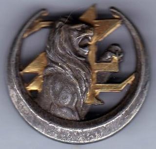 Les insignes d'Infanterie d'Afrique 1939-1940 Img_2110