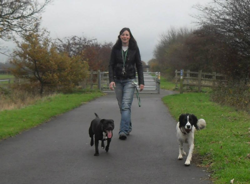 Photos that our dog walker Clair took when out and about :) Moll_a10