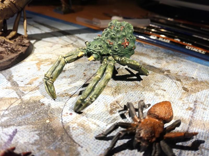"""Concours de peinture SDA n°5 - """"La reine des araignées """" Img_2022"""
