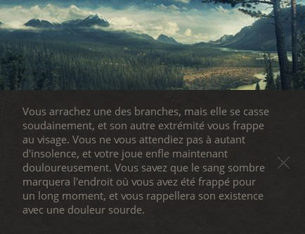 Life Is Feudal... Vielle10