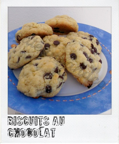 Biscuits - Page 8 Image415