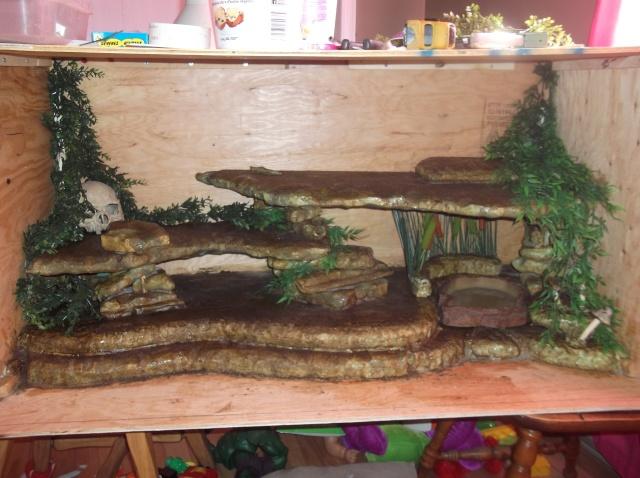 Mon nouveau terrarium Dscf0835