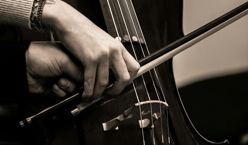 Jeune violoncelliste, la tenue de l'archet 31304710