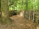 début d'améliorations et de fortifications du camp 1 Diver212