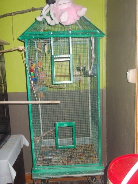 Les installations de vos oiseaux Dscn2731
