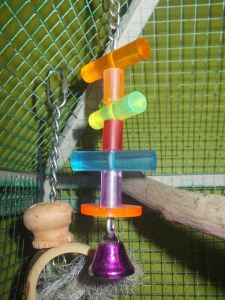 Les installations de vos oiseaux Dscn2733