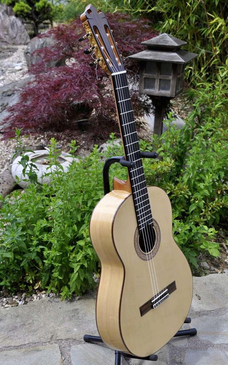 Construire sa guitare ... et plus si affinités avec le travail du bois - Page 7 _dsc0116