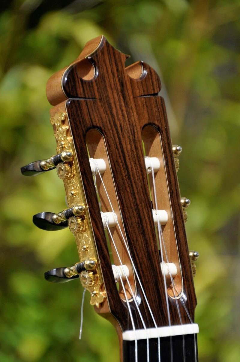 Construire sa guitare ... et plus si affinités avec le travail du bois - Page 7 _dsc0117