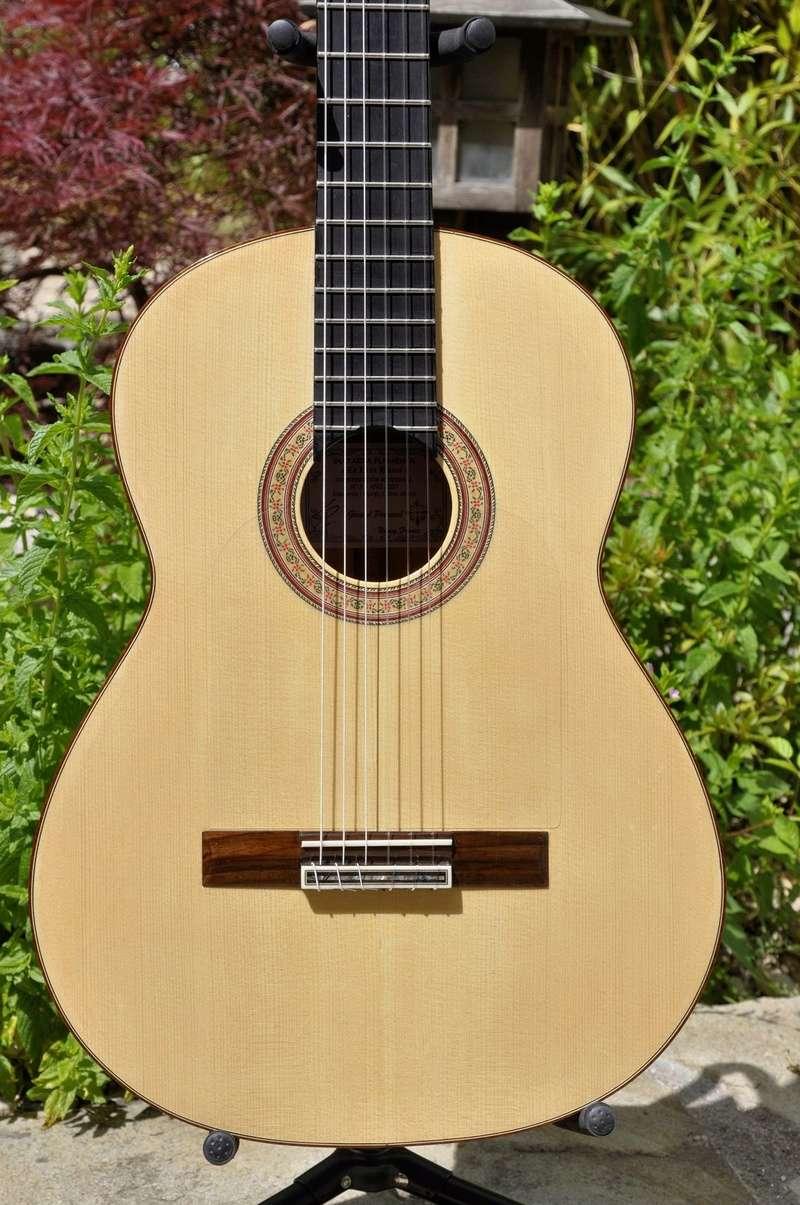 Construire sa guitare ... et plus si affinités avec le travail du bois - Page 7 _dsc0118