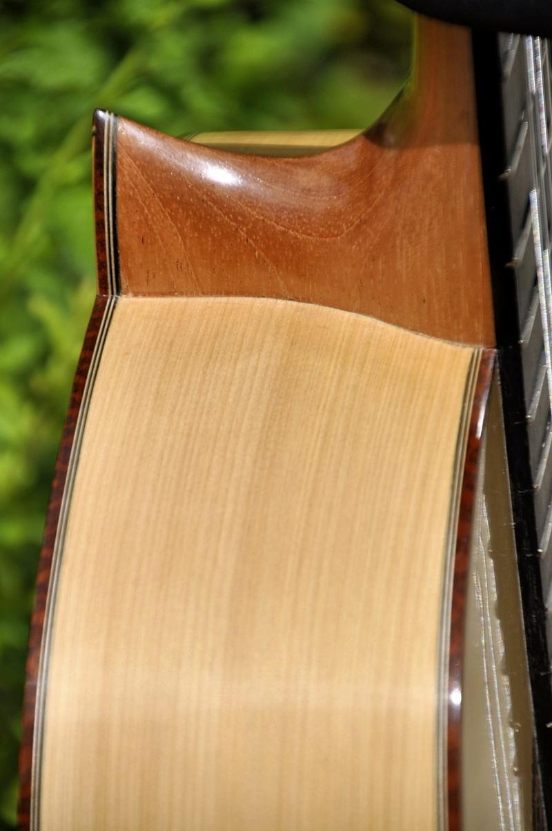 Construire sa guitare ... et plus si affinités avec le travail du bois - Page 7 _dsc0119