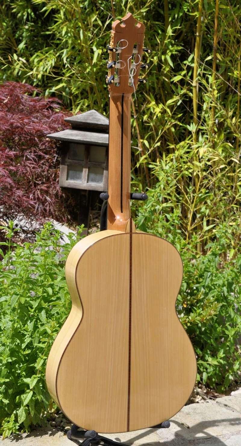 Construire sa guitare ... et plus si affinités avec le travail du bois - Page 7 _dsc0121