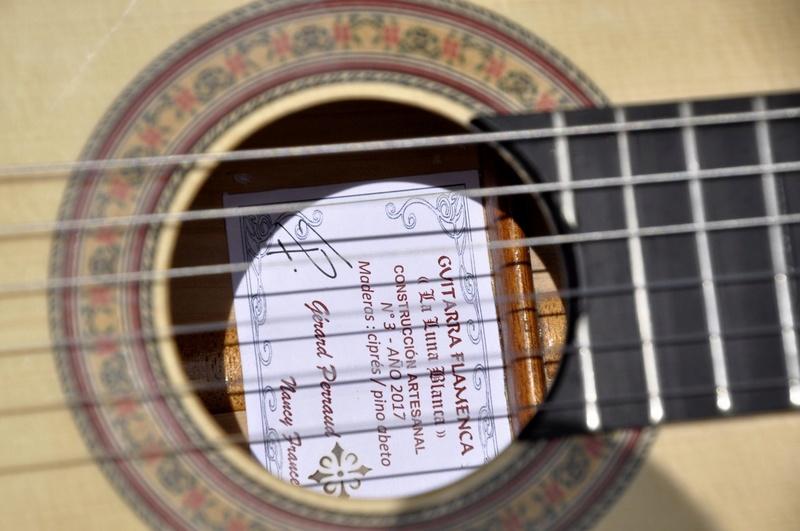 Construire sa guitare ... et plus si affinités avec le travail du bois - Page 7 _dsc0122