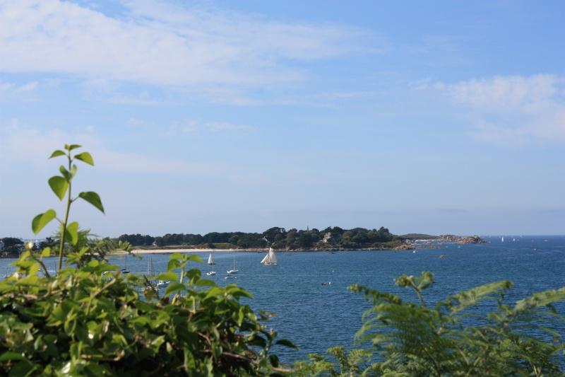 La baie de Morlaix  et le Chateau du Taureau Musae_10