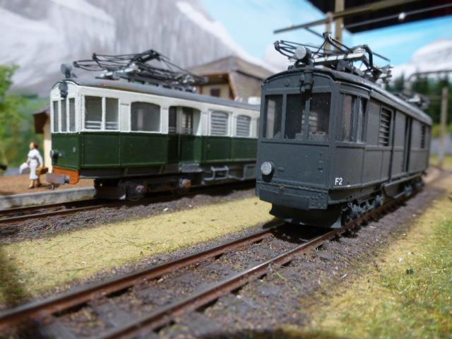 Conférence sur le Petit train Annemasse-Sixt Expo_114