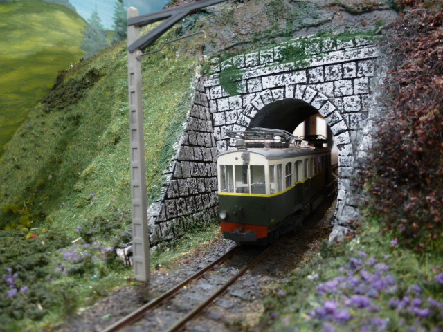 Conférence sur le Petit train Annemasse-Sixt Expo_115