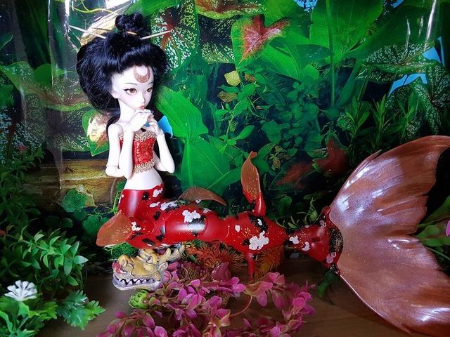 [Merrow Depths doll] Chang'o deesse de la lune 19029710