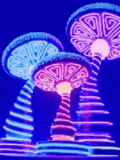 Neon lights - Page 2 4abe2e10
