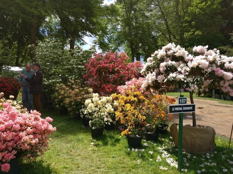 la journée des plantes au domaine de chantilly Img_2163