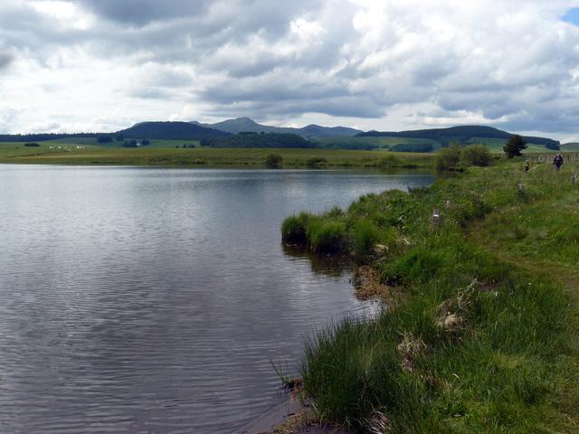 Lac et tourbière de Bourdouze (63) P1360716