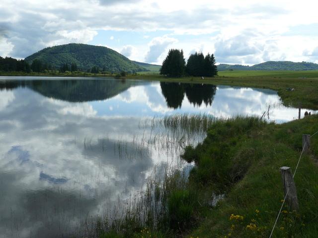 Lac et tourbière de Bourdouze (63) P1360812