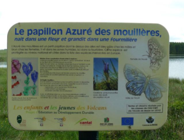 Lac et tourbière de Bourdouze (63) Pannea10