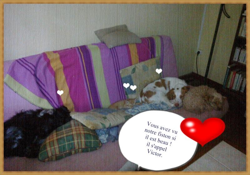 Kookie dans sa famille . - Page 5 02112010