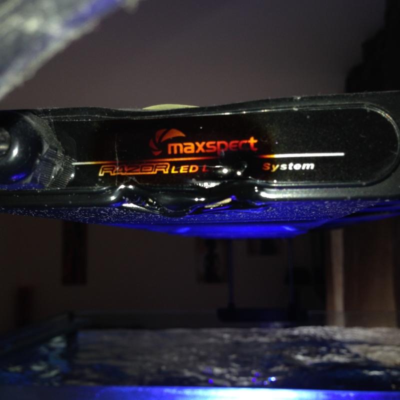 problème avec ma rampe razor 420R 160W  Img_1212