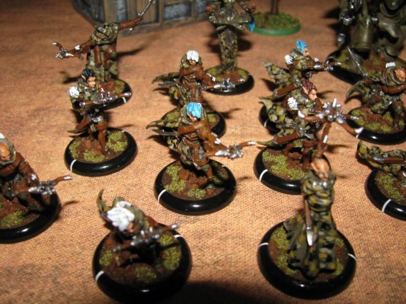 L'armée de Morathi Warmac10