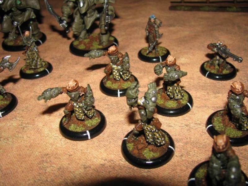 L'armée de Morathi Warmac12