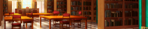 Descriptions Librar11