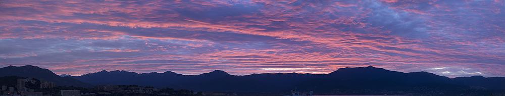 rose du matin Panora11