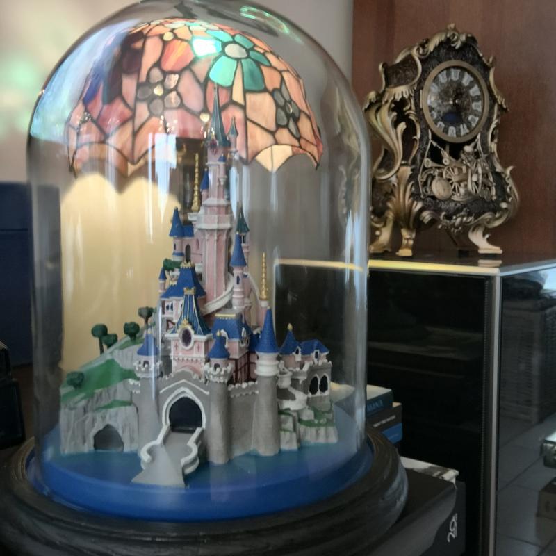 Présentation du Merchandising des 25 ans de Disneyland Paris - Page 3 Img_5219