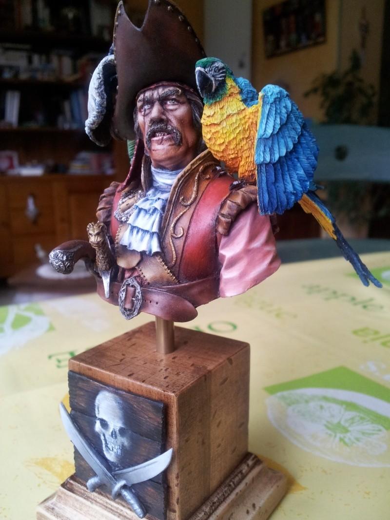 Buste du pirate et son perroquet... 20140117