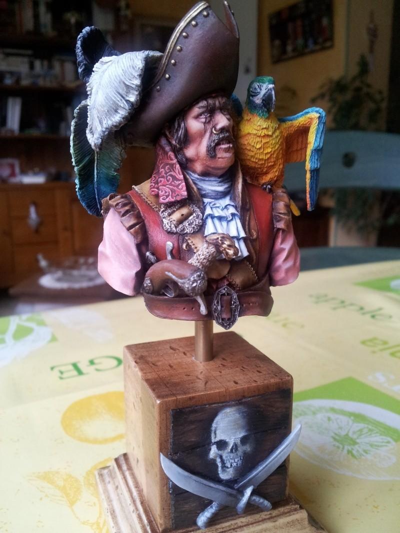 Buste du pirate et son perroquet... 20140118