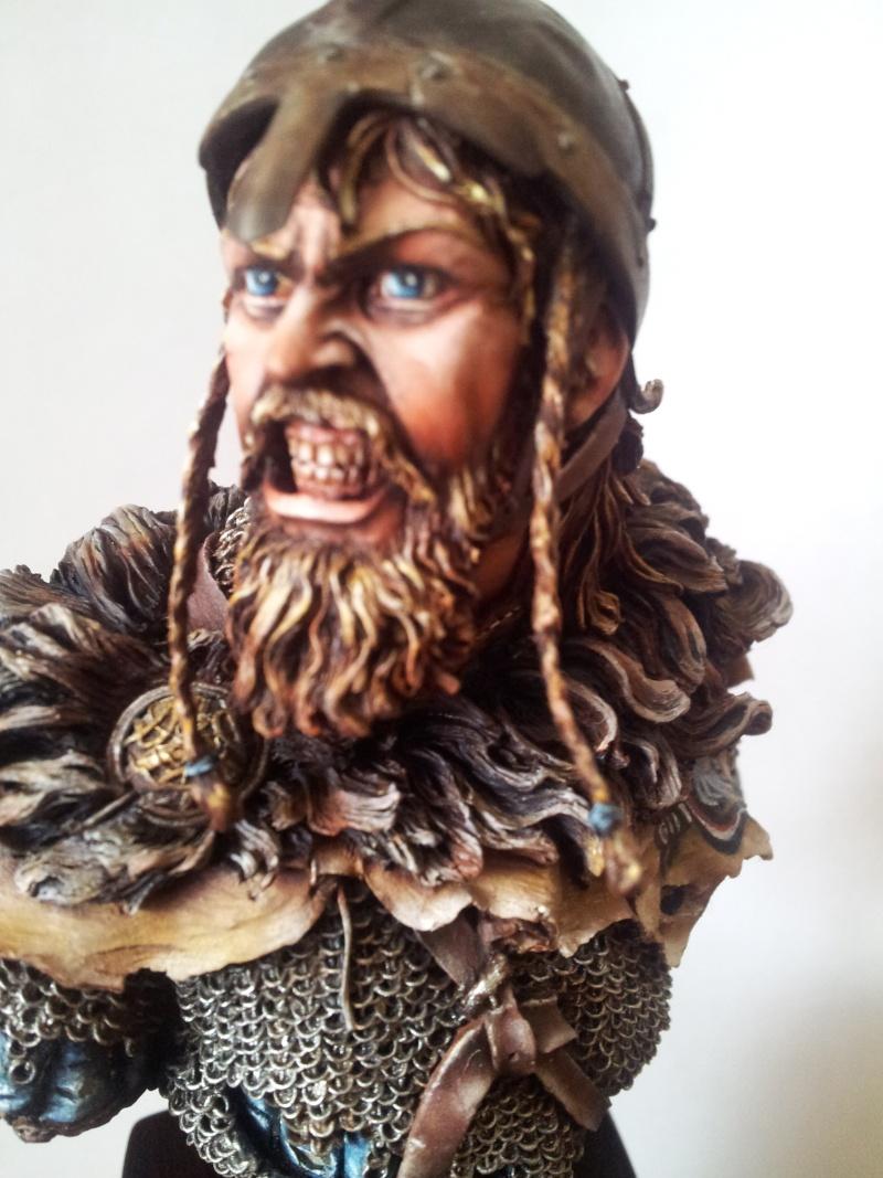 Viking fury ... 20140512